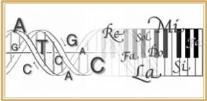 El Rol de Sonido en la Activación del ADN