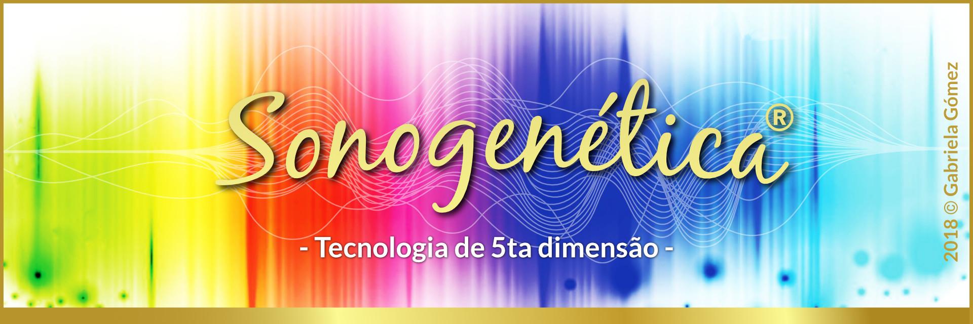 Sonogenética